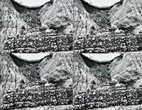 作品画像:土砂崩れ防止壁