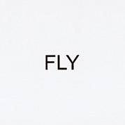 作品画像:インストラクション・ペインティング FLY