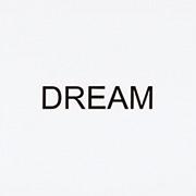 作品画像:インストラクション・ペインティング DREAM
