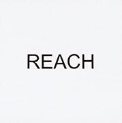 作品画像:インストラクション・ペインティング REACH