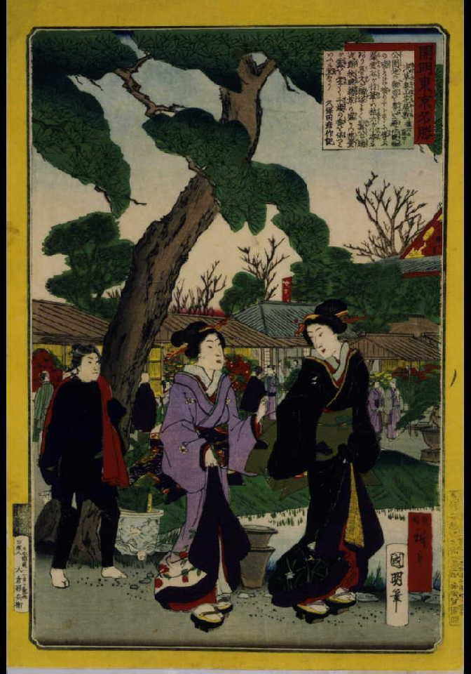 作品画像:開明東京名勝 浅草奥山花屋敷植六の庭中