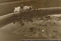 作品画像:池の畔