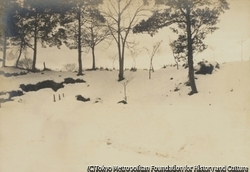 作品画像:雪曇り