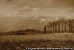 作品画像:高原の二月