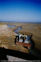 作品画像:日本河川開発調査会による調査で