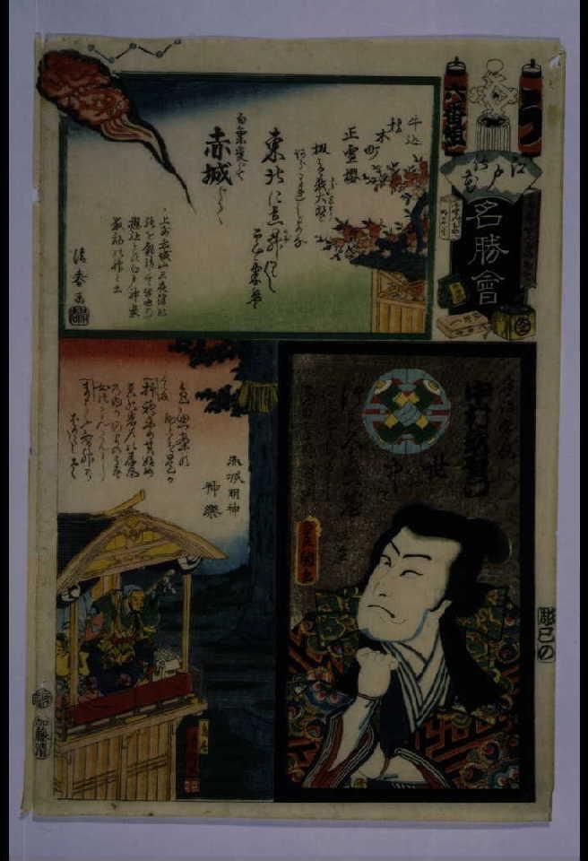 作品画像:江戸の花名勝会 う 六番組