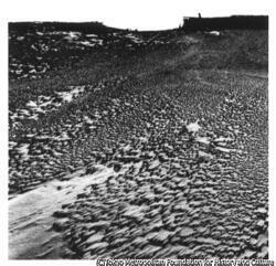 作品画像:荒廃した大地