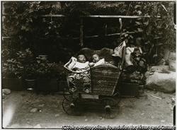 涼しい木影に置かれた乳母車の中で、夢見の子供達は、すでに還暦を過ぎている