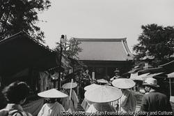 作品画像:東京浅草 雑景