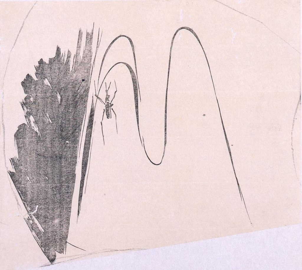 作品画像:墨版 水上のあめんぼ