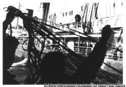 作品画像:石坂洋次郎『若い人』出航する連絡船
