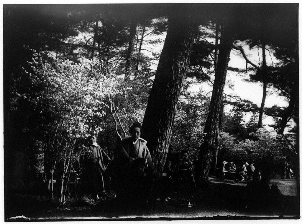 作品画像:松林の中の子供たちと女性