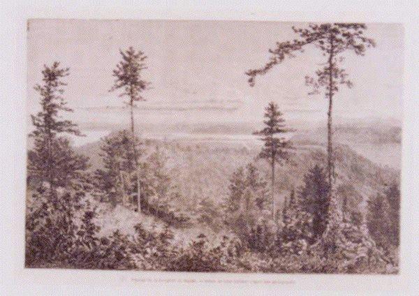 作品画像:アンベール「幕末日本図絵」挿絵 相模野風景
