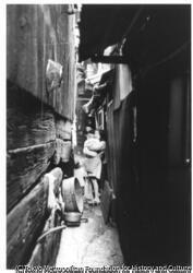 作品画像:せまい路地の生活1