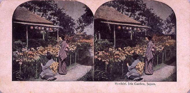 作品画像:Horikiri,Iris Garden,Japan.