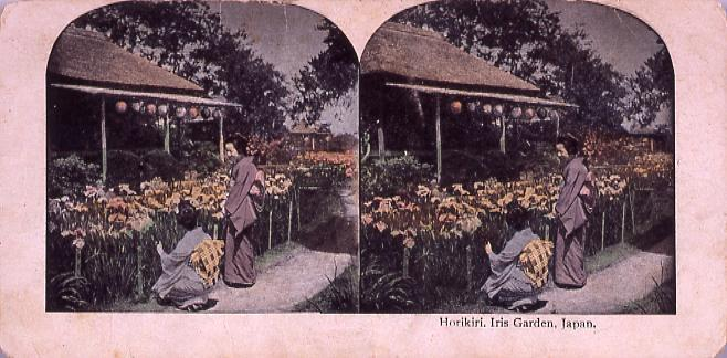 Horikiri,Iris Garden,Japan.