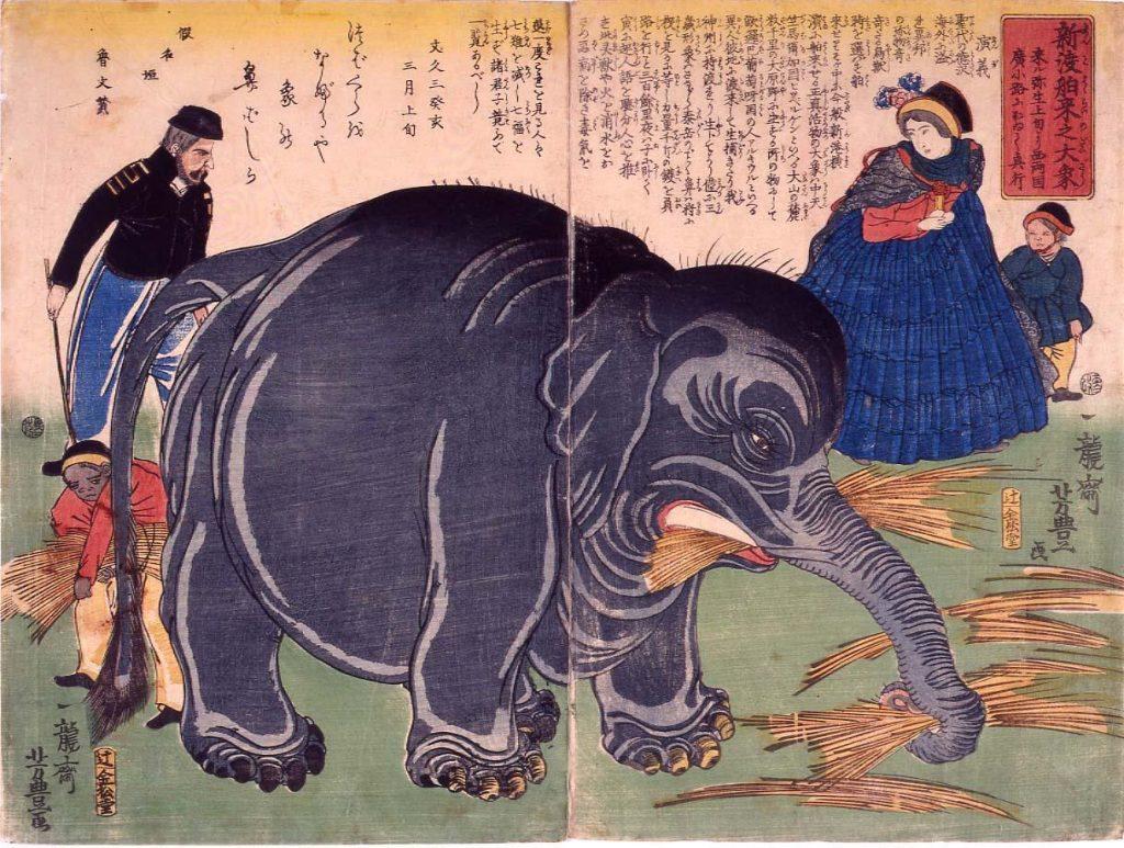 作品画像:新渡舶来之大象