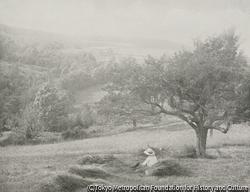 作品画像:ニューイングランドの風景