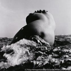 作品画像:ヌード(5)1945~49年
