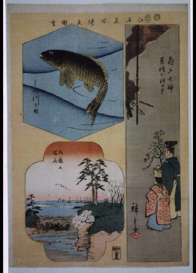 作品画像:江戸名所張交図会 亀戸天神菜種之神事、とね川の鯉、御殿山満花