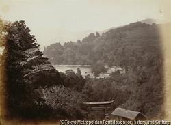 作品画像:芦ノ湖