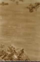 作品画像:夏の海
