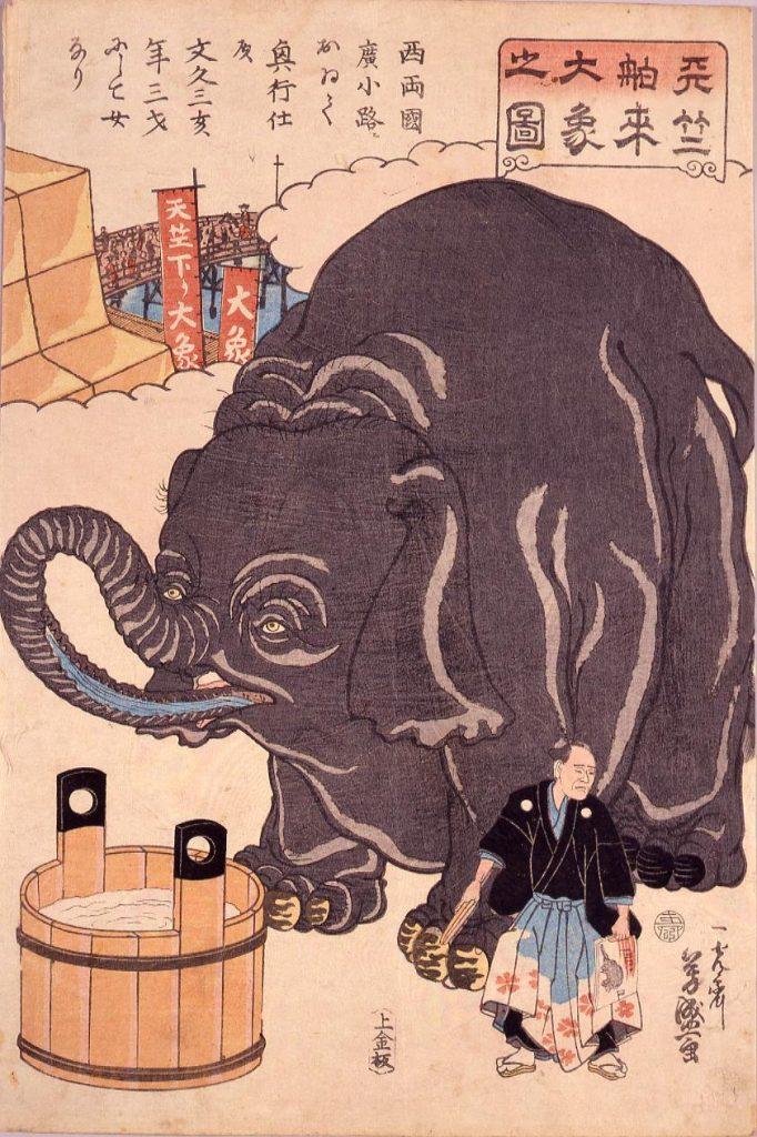 作品画像:天竺舶来大象之図