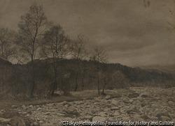 作品画像:河原と樹木