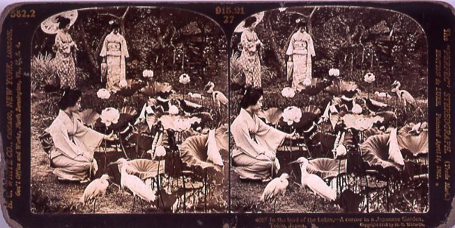 作品画像:In the land of the Lotus,―A corner inA Japanese Garden,Tokio,Japan.4015