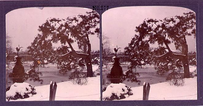 作品画像:日比谷公園池辺の雪景(No.277)