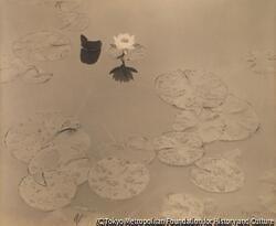 作品画像:ハスの花