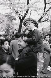 作品画像:上野公園の花見