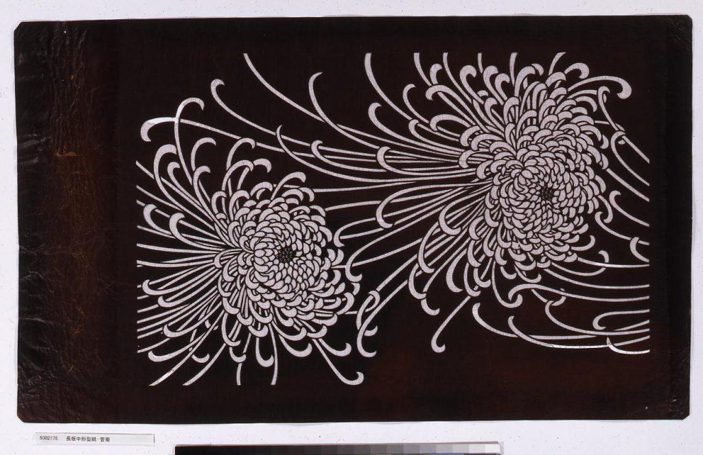 長板中形型紙 管菊