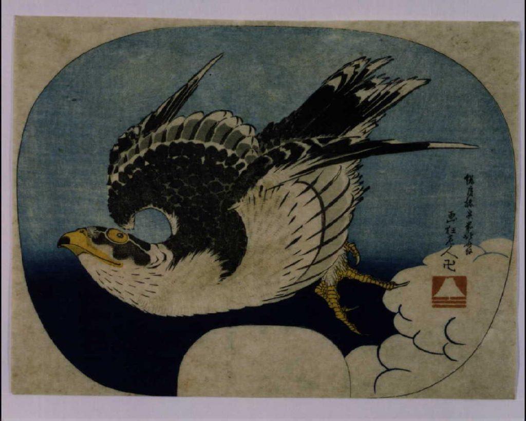 作品画像:鷹
