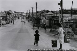 作品画像:沖縄・石川