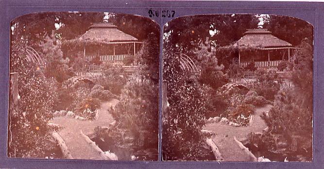作品画像:サンフランシスコ日本庭園(No.287)