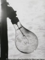 作品画像:(電球と海)