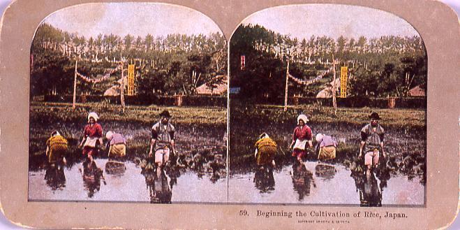 作品画像:Beginning the Cultivation of Rice,Japan.59