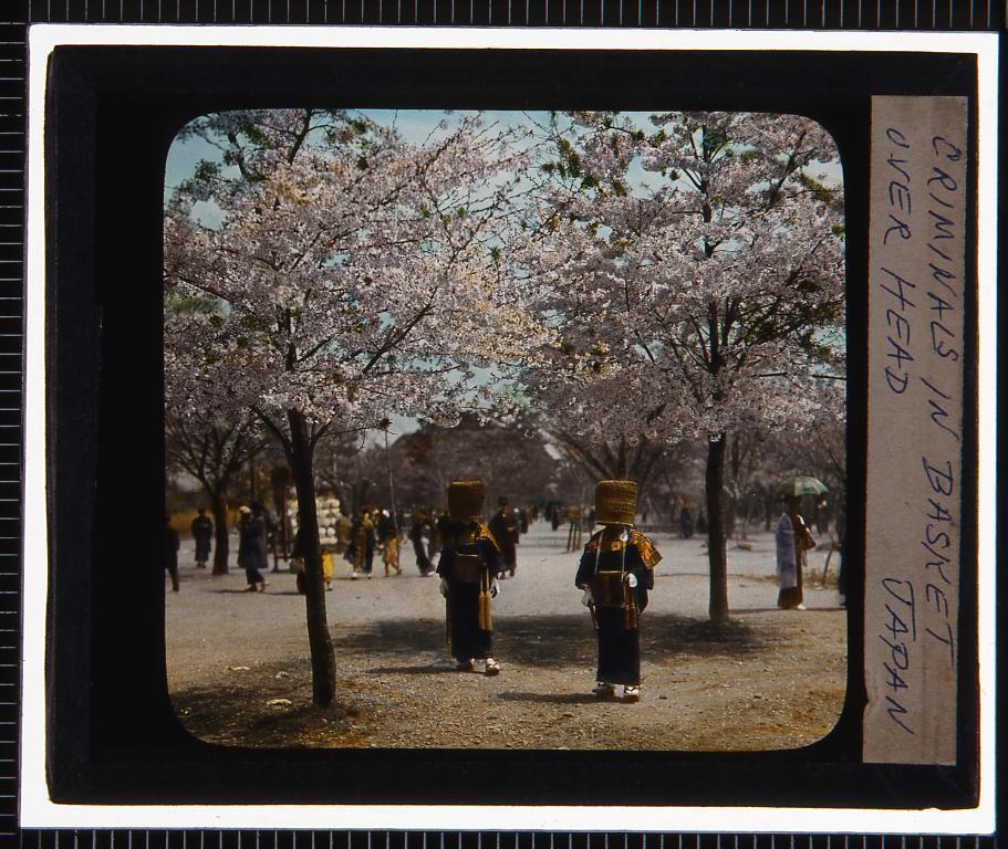 作品画像:京都 嵐山(幻燈原板)