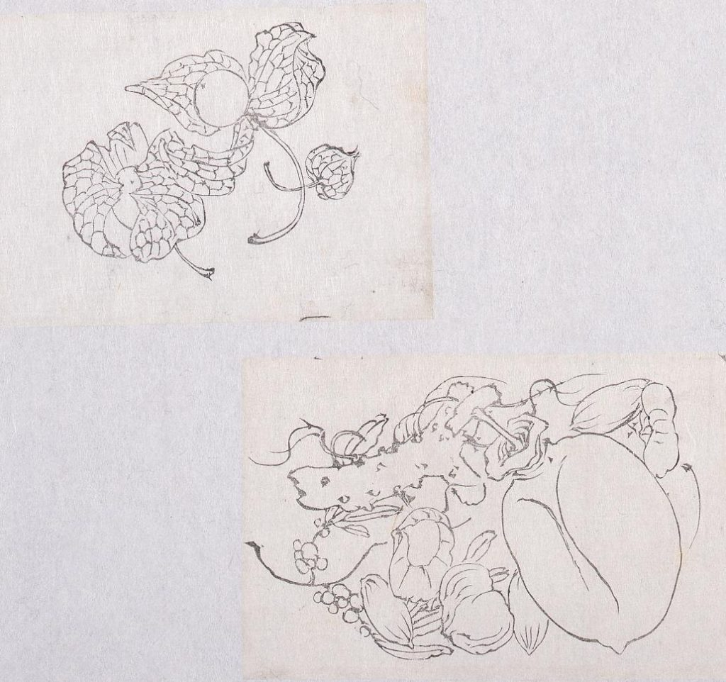 作品画像:墨版貼交 酸漿、石榴