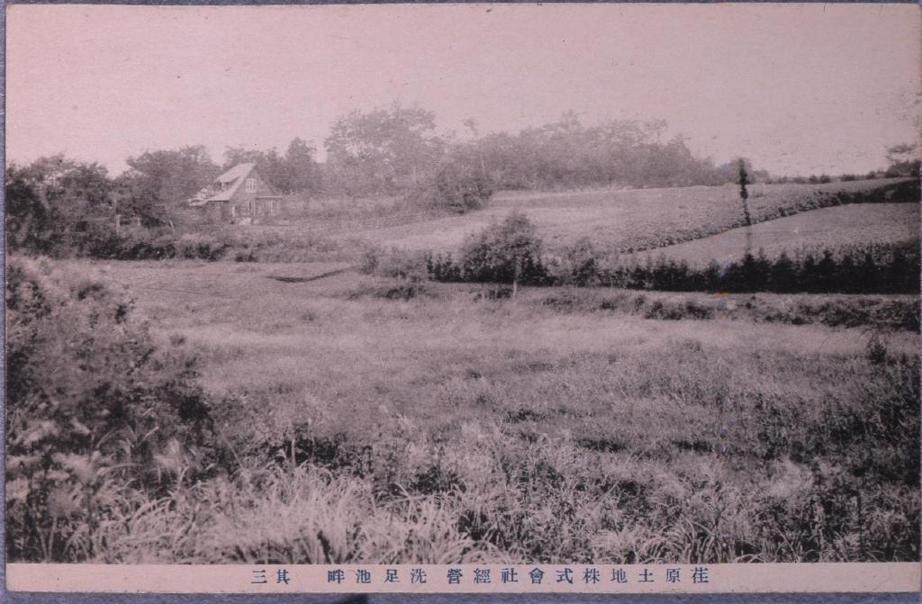 作品画像:荏原土地株式会社経営,洗足池畔 其三