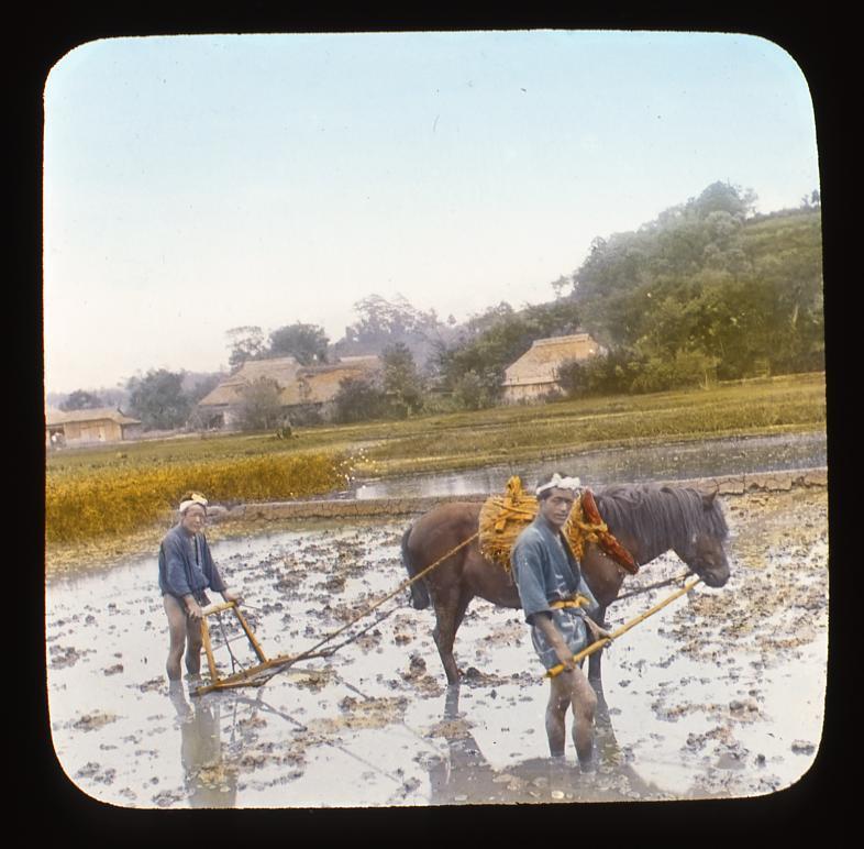 作品画像:田を耕す農夫と馬