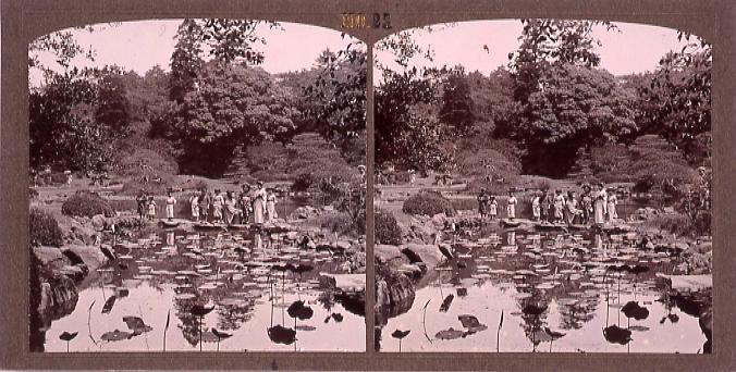 作品画像:東京植物園(小石川植物園)(一)(No.21)