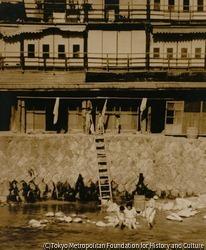 作品画像:盛夏河畔