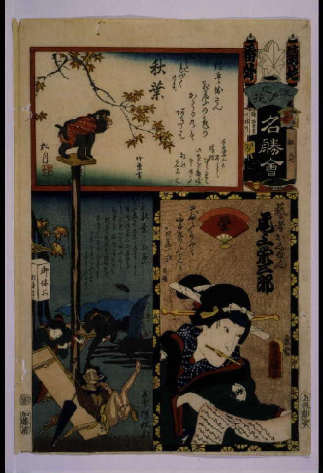 作品画像:江戸の花名勝会 請地 番外