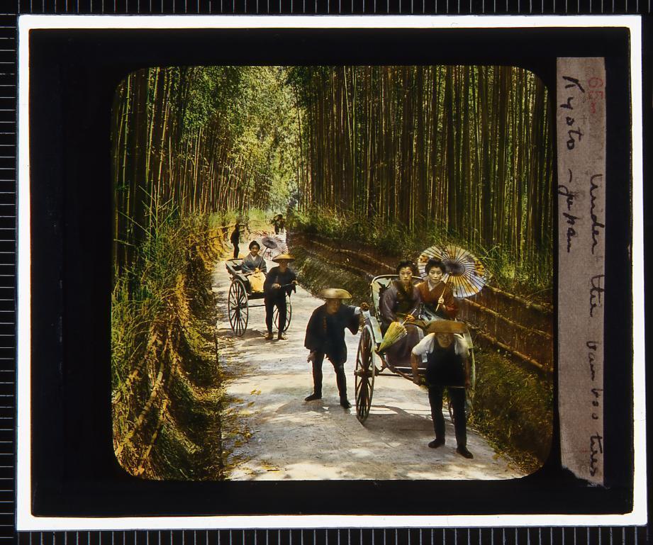 作品画像:京都 竹林(幻燈原板)