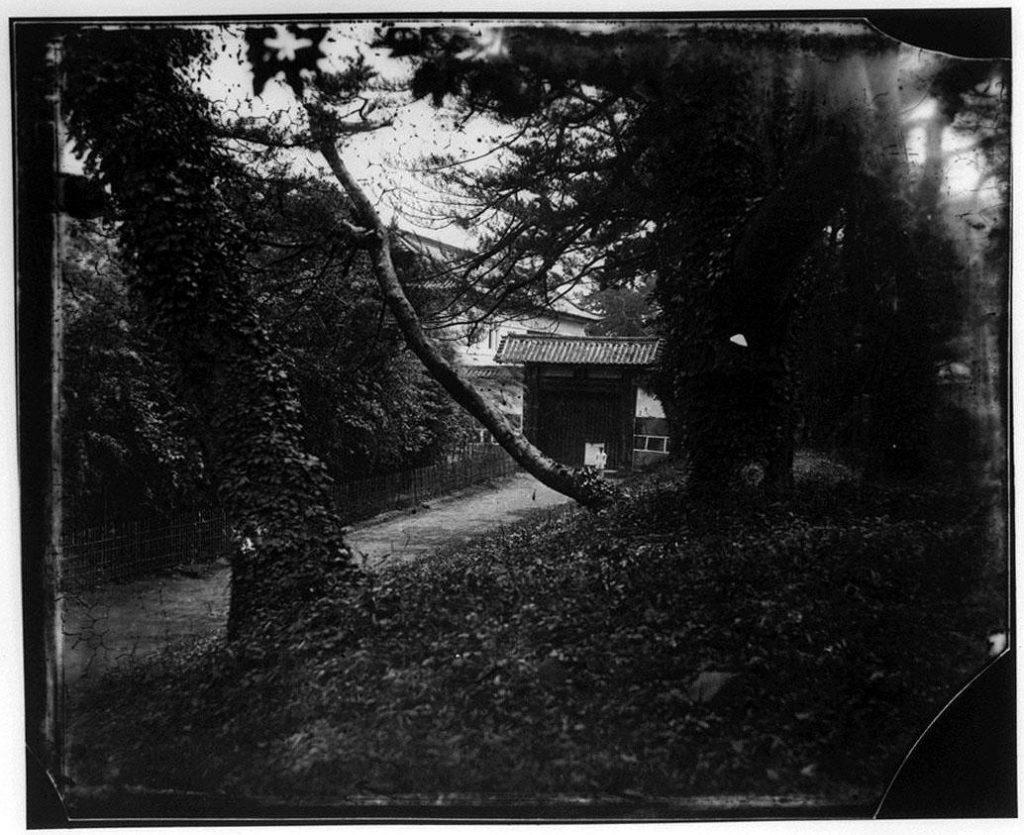 作品画像:旧江戸城写真ガラス原板  西ノ丸吹上門