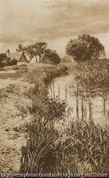 作品画像:イグサの茂る池