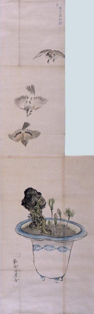 作品画像:粉本 盆栽飛鳥