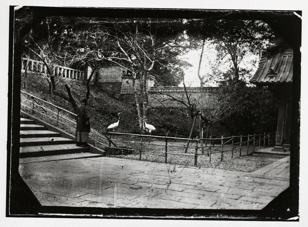 作品画像:文部省博物局主催博覧会湯島聖堂